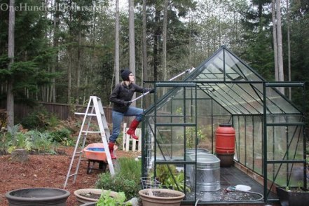 Cleaning-and-Disinfecting-the-Greenhouse-for-Winter-Gardening